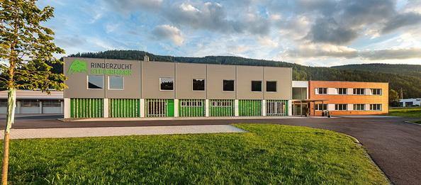 Versteigerungshalle Traboch, Steiermark