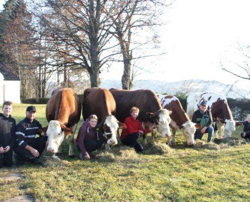 Familie Grabenbauer aus Ratten in der Steiermark mit ihren fünf 100.000-kg-Kühen; v.l.n.r.: HACKE, SALI, HELEN, JOLANDA und ZIRBE