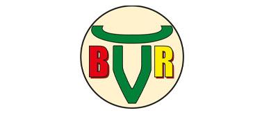 Logo Burgenländischer Rinderzuchtverband