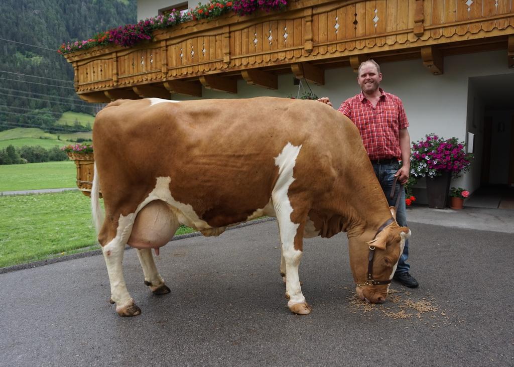 TULPE, Wassermann x Humid, B.: Franz Resinger, Matrei i. O., Tirol, Foto: privat